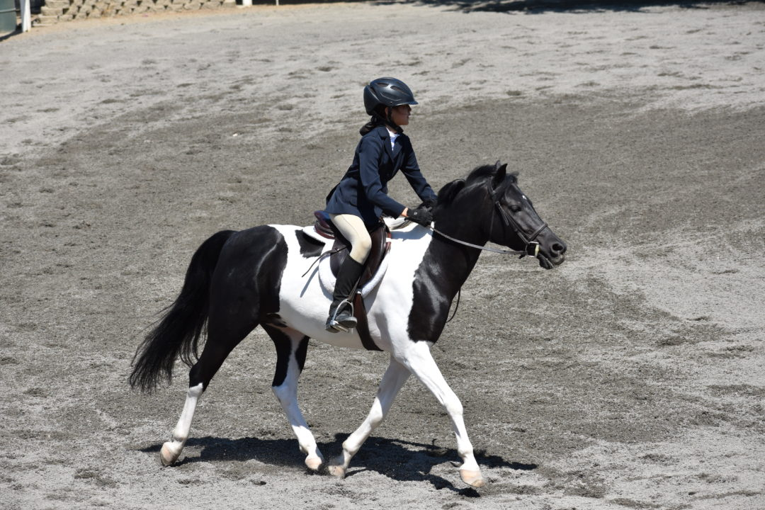 Angelina & Yankee – Under Saddle