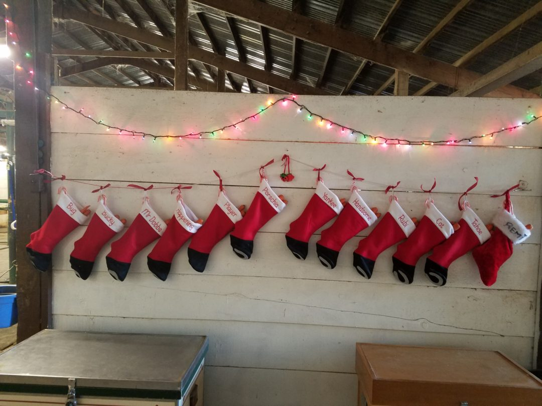 And the stockings were hung…